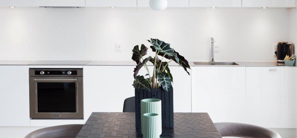 Valge köögimööbel — kas hea või halb mõte?