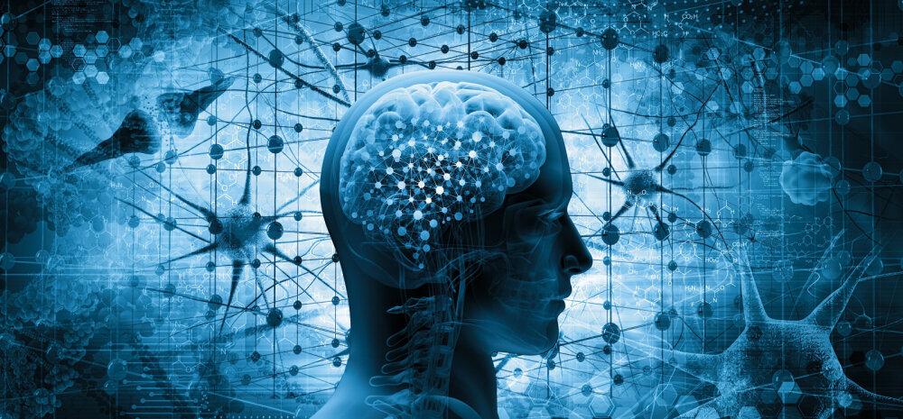 TEST | Oled targem kui enamik inimesi? Paljud kasutavad vaid 10% oma ajust. Tee test ja saad teada