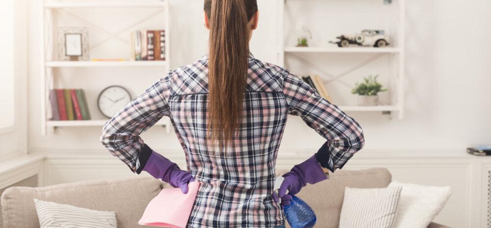 Страшно представить: за год в доме собирается около 20 кг пыли!