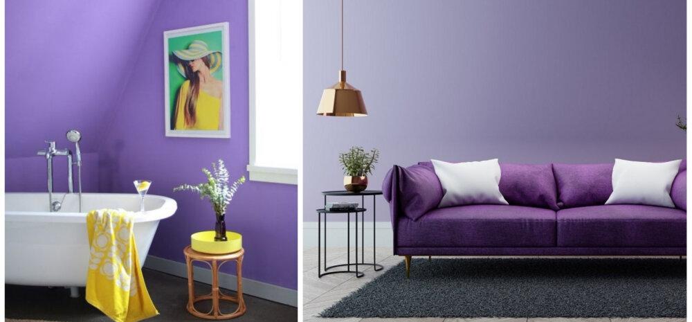 Vaata, kuidas mõjuvad interjööris tänavused trendivärvid — maagiline ultraviolett ja rahustav lavendel
