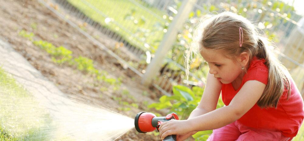 Heli Künnapas: laske lapsukestel töötada!