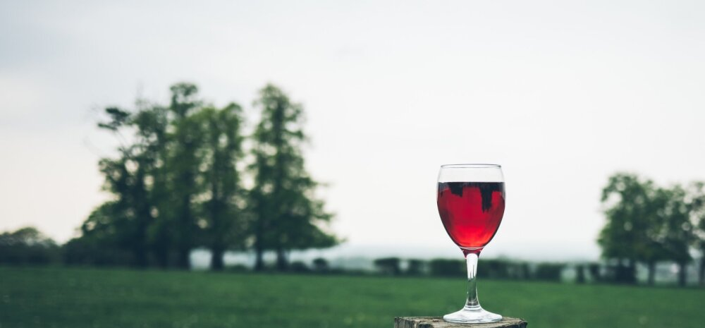 Millist tüüpi veini toidu kõrvale eelistada?