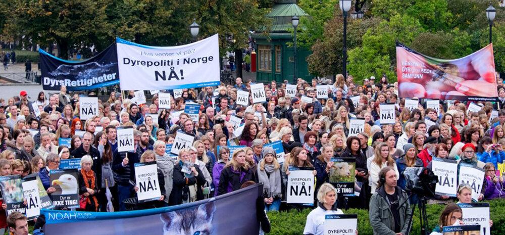 Norrasse kavandatava loomakaitsepolitsei projekt põrus sajaga
