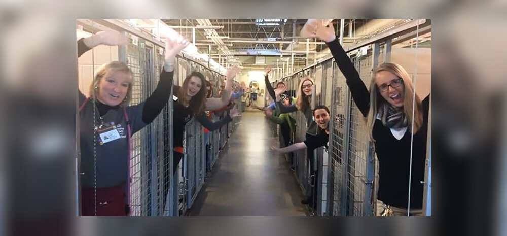 Südantsoojendav KLÕPS: Parim päev aastas! Varjupaigatöötajad rõõmustavad — kõik loomad said jõuluks koju