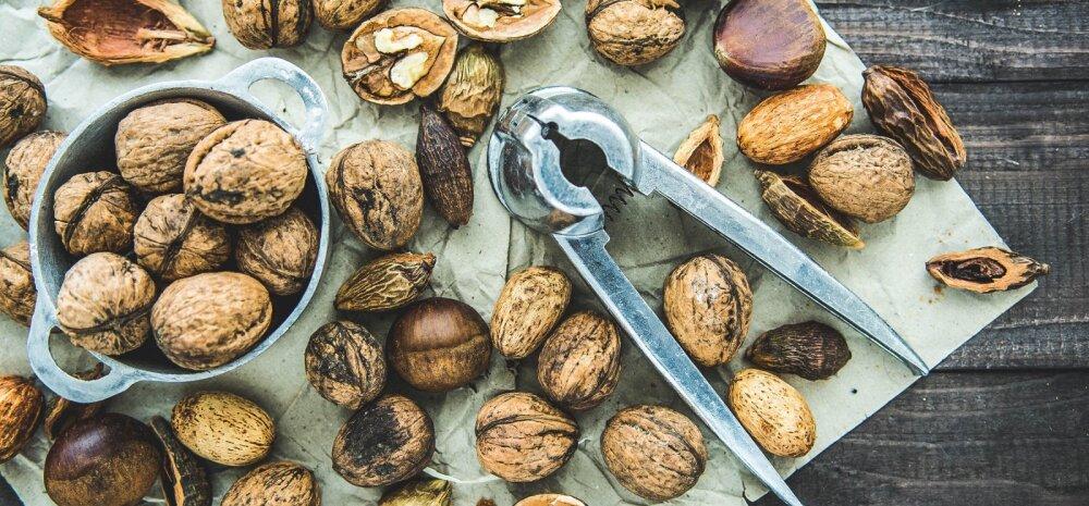 Ettevaatust! Kolm põhjust, miks peaksid tarbima päevas vaid peotäie pähkleid