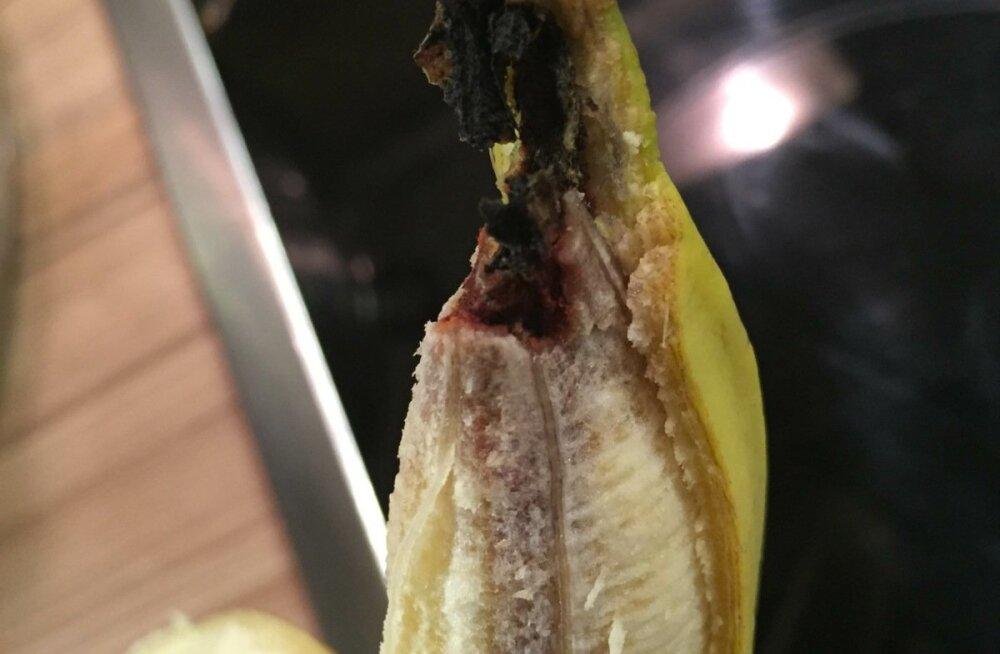 banaaniotsa mädanik