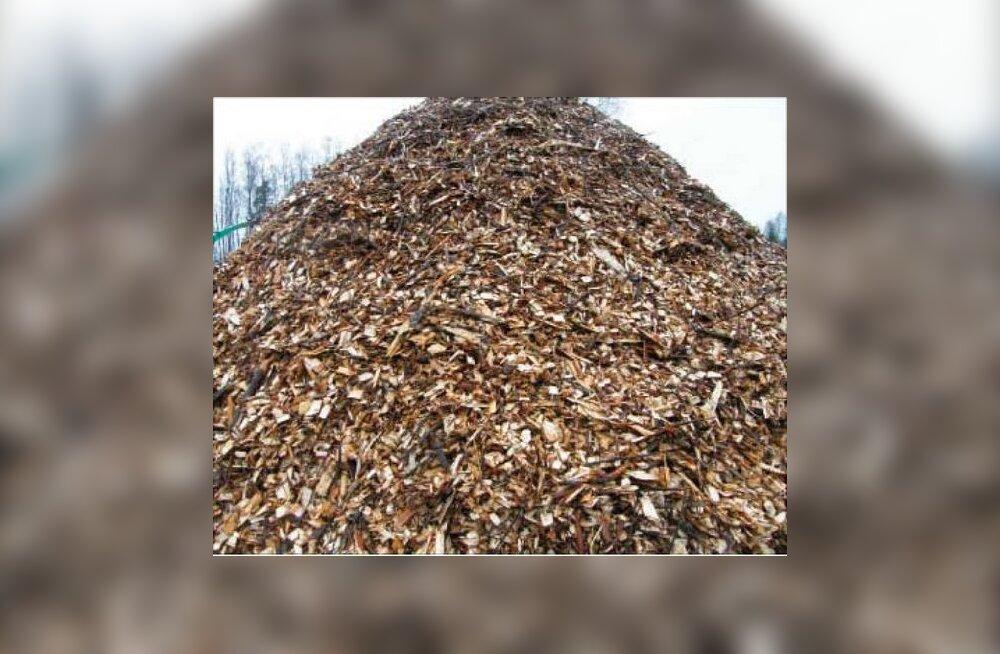 Tuleviku puiduturul  on tegija energiapuit