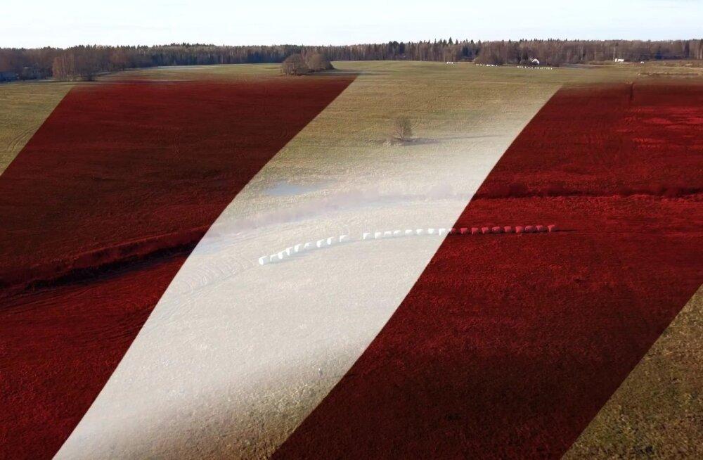 Lätlased õmblevad oma riigi sünnipäevaks 12,5 hektarise pindalaga 10 tonni kaaluva lipu