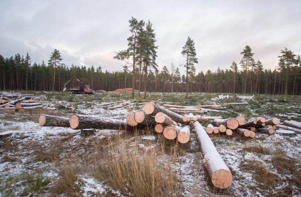 Metsaseaduse muutmisega kaasnes harvanähtav võitlus