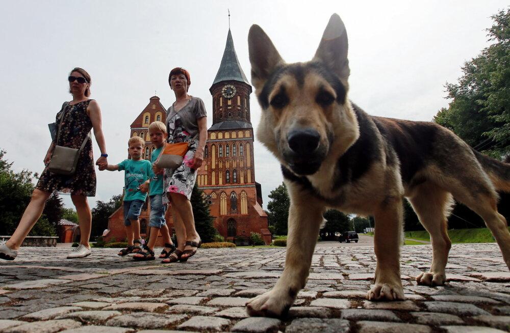 Veskimägi: tahan uskuda, et Kaliningradi eralduskatses pole midagi pahatahtlikku