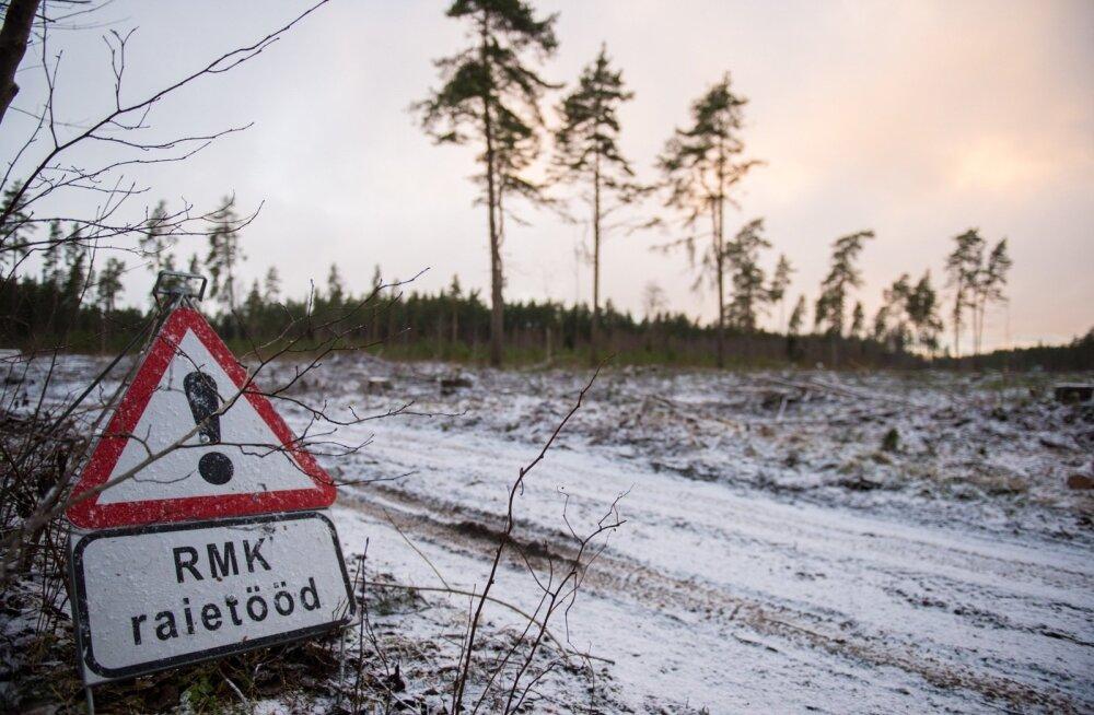 Advokaadid tselluloositehase ja RMK lepingust: tõenäoliselt on tegemist riigiabiga, Estonian Airiga saadud valusaid õppetunde ei peaks kordama