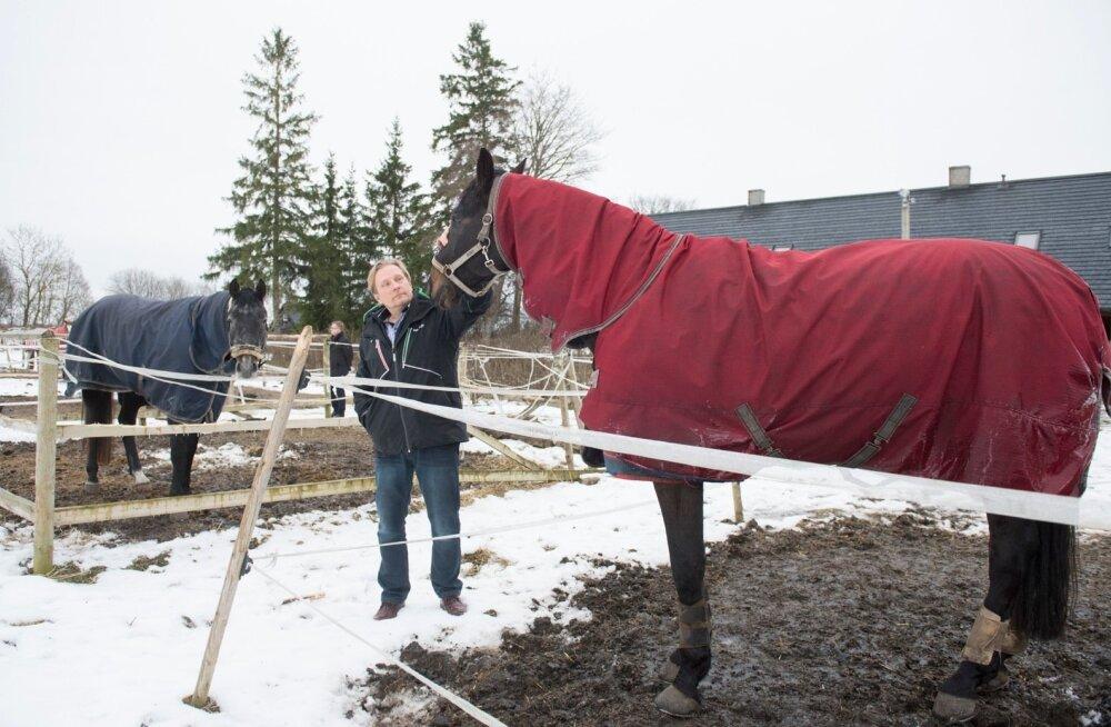 Tommi Lodman oma hobustega. Hobusekasvataja on nördinud, et Kiili vallavalitsus ei ole tema ratsutamiskompleksi detailplaneeringut kinnitanud. Vald aga ootab planeeringule täiendusi.
