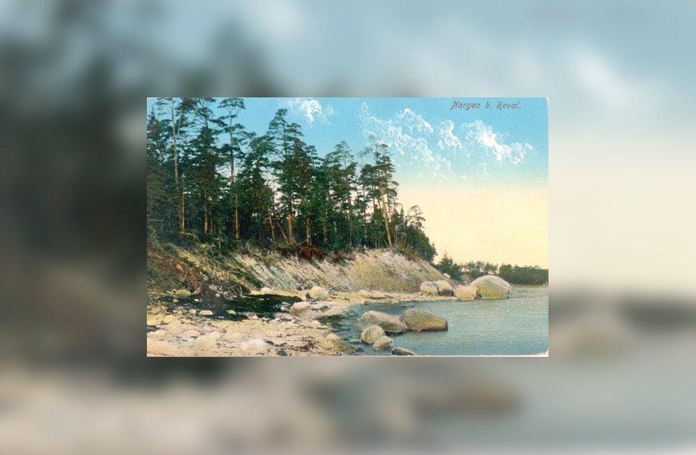 Naissaare rannikuäärne kaitsemets 1913. aastal.