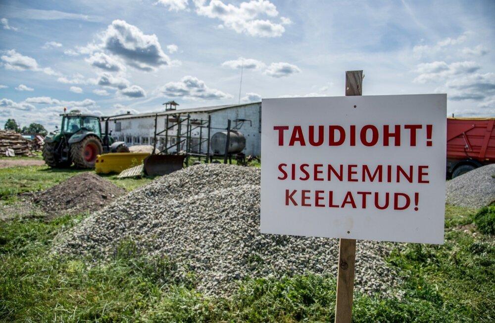 Viljandimaal avastati seakatk