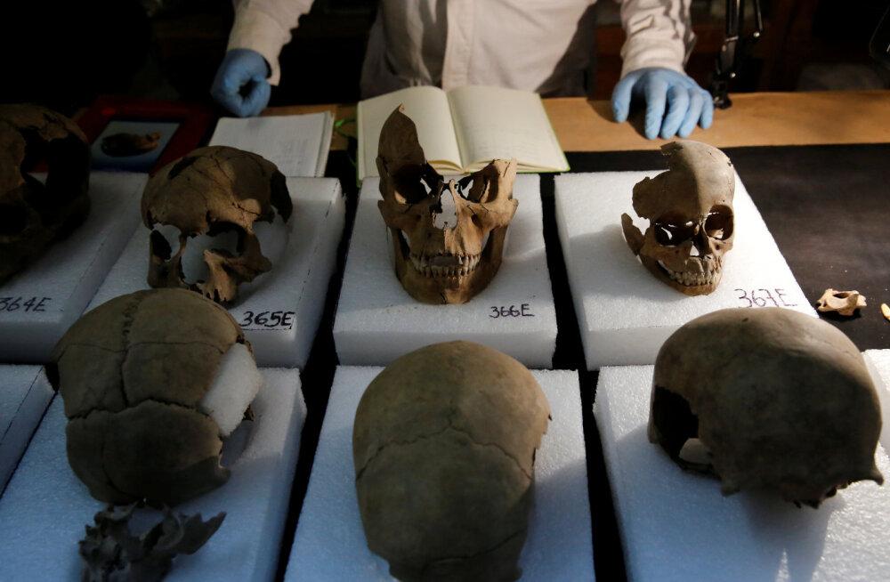 Asteegi pealinnast Tenochtitlanist kaevamistel leitud koljud
