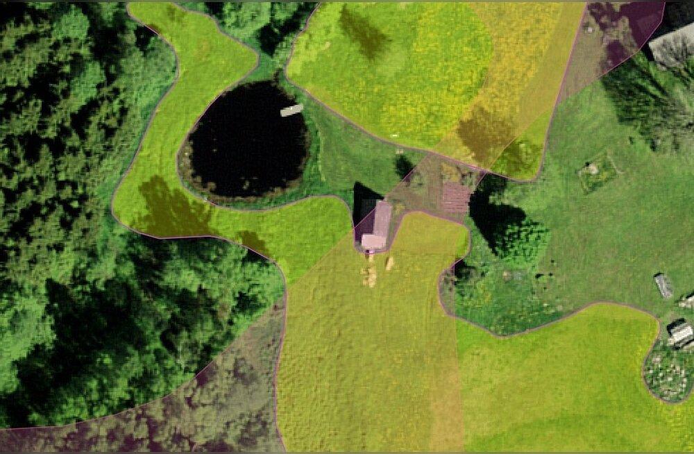Sellel PRIA kaardikihilt võetud pildil võib näha, kuidas püsirohumaana on märgitud Madsa talu maasikamaa ja künnivaal.