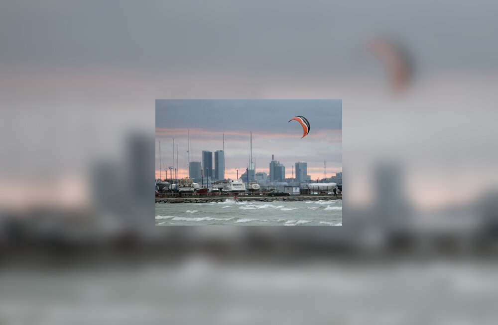 Tallinna laht, lohelaudur