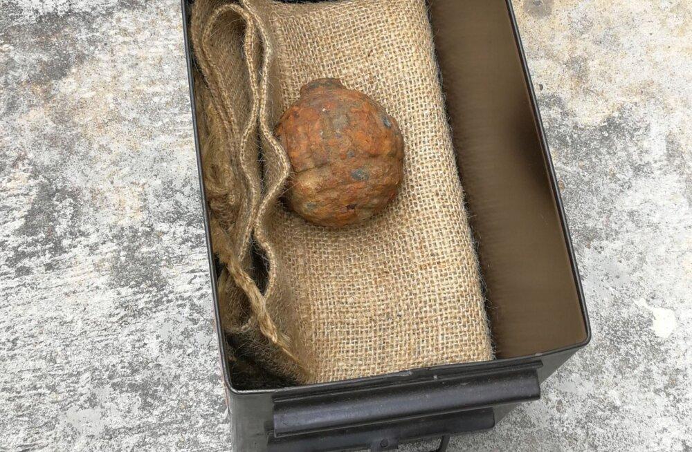 Kartulikrõpsutehasest leitud kummaline kartul osutus hoopis käsigranaadiks