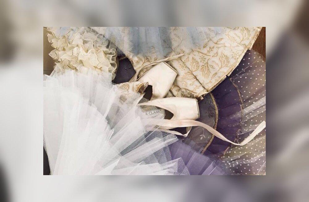 """В Стране чудес открывается выставка """"Лебединое озеро — волшебный мир балета"""""""