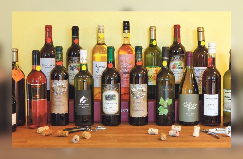 Maalehe koduveinikonkurss: viinamari, kreek ja pihlakas