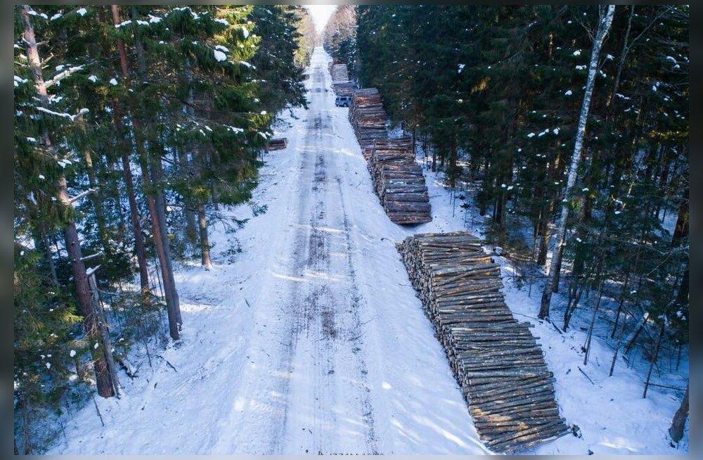 Riiklikud keskkonnateenistused alustasid kontrolli Soomaal teostatava raie üle
