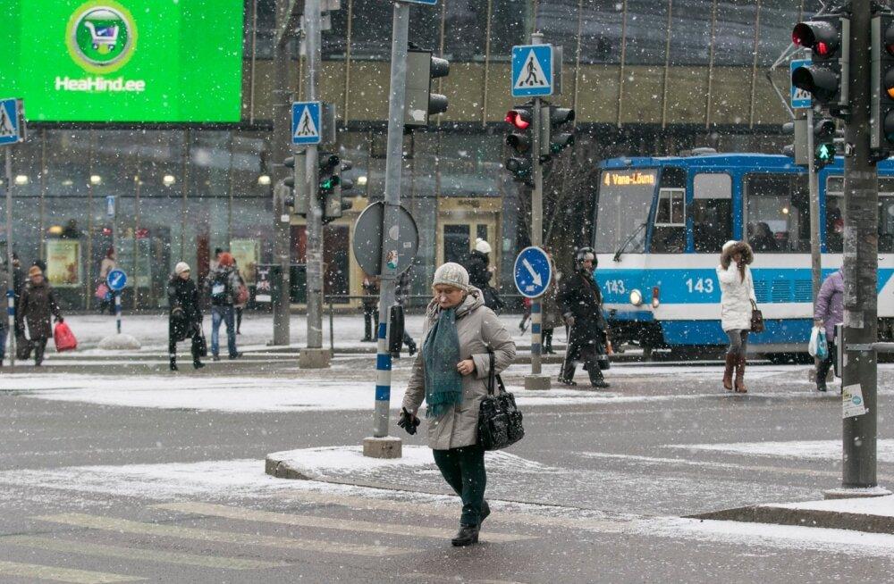 Punase tulega teed ületanud jalakäijad