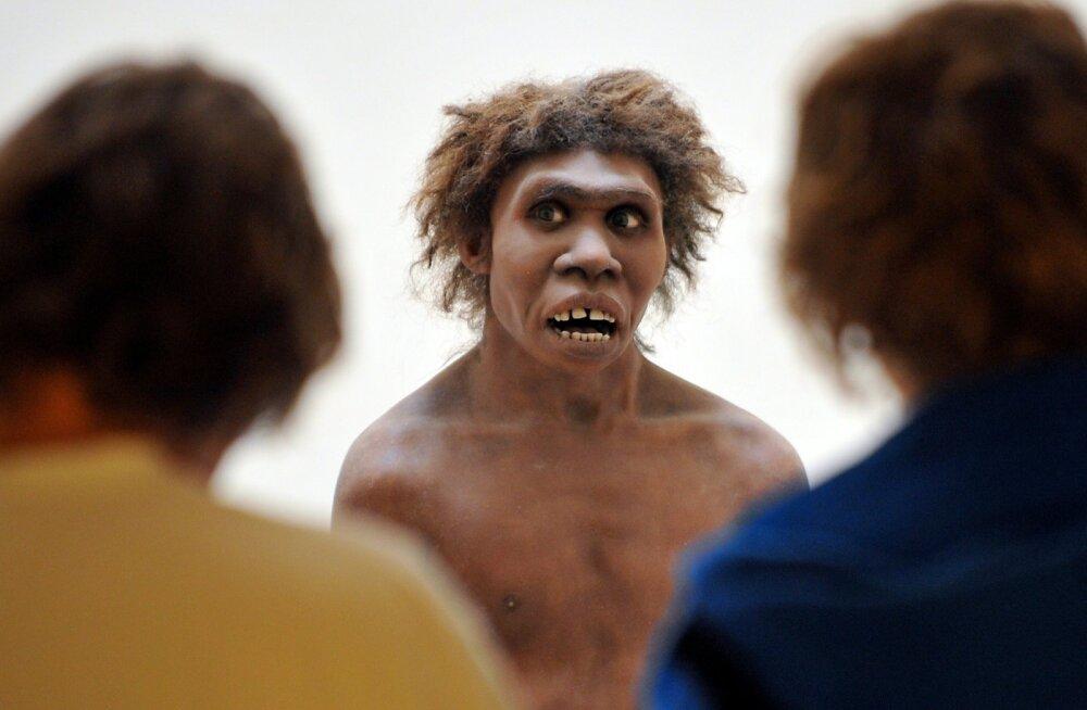 Viimased uuringud näitavad, et muusa puudutas ka neandertallasi.