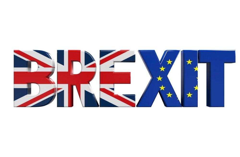 Briti EL-i referendumi päevik