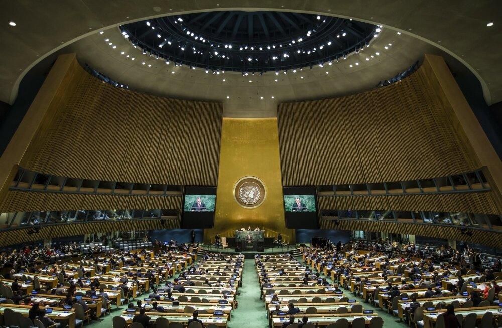 Juhtkiri: väikse Eesti asjatult suur siht ÜRO-s