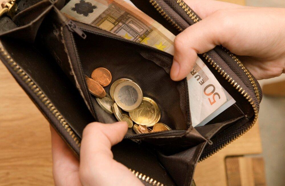 Uuring: Eesti peredel on rahalisi puhvreid vähem kui euroalal keskmiselt