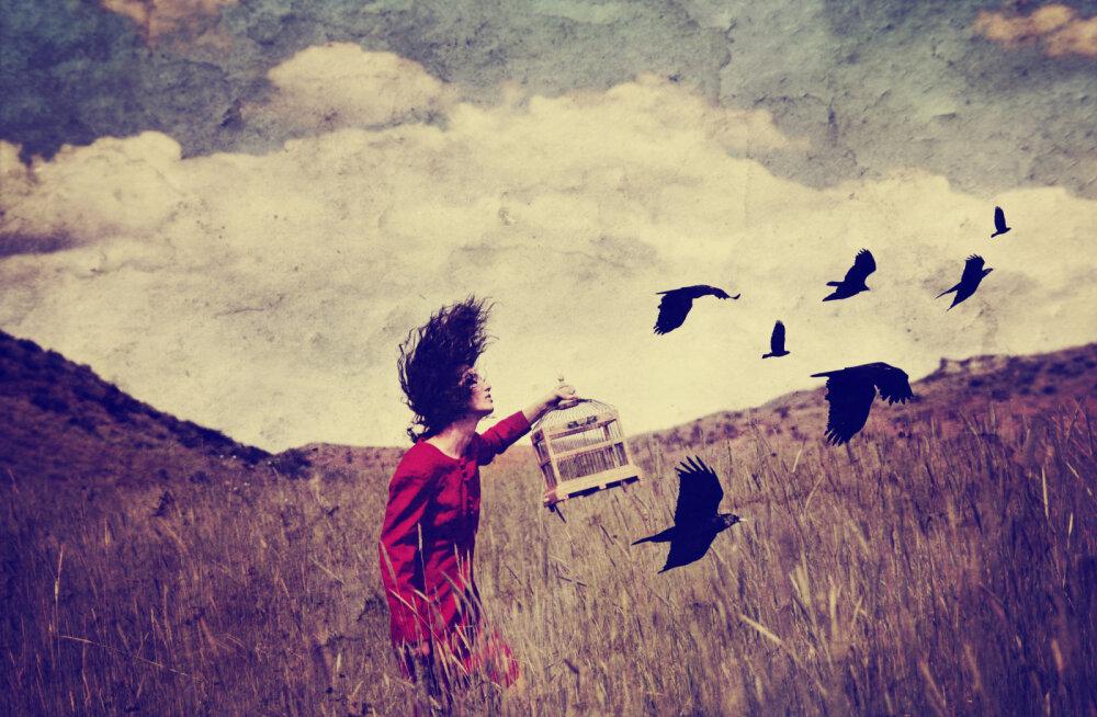 Alkeemia lugemisnurk   Asjadest lahtilaskmise kunst: oma vähem, ole rohkem!