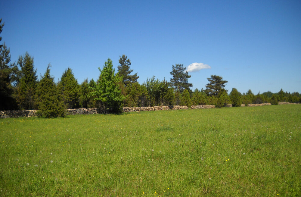 Maaomanikud saavad looduskaitseteemadel küsida tasuta õigusabi