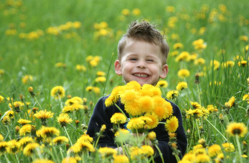 Аптекарь: 10 рекомендаций о предотвращении и смягчении аллергии на цветение