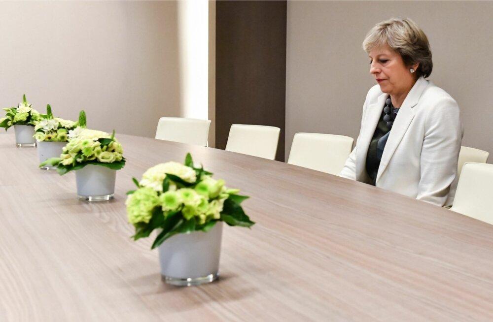 Saksa ajalehe teatel kurtvat Theresa May, et ta on vastu seina surutud ja tema peale ihuvad hammast nii sõbrad kui ka vaenlased.