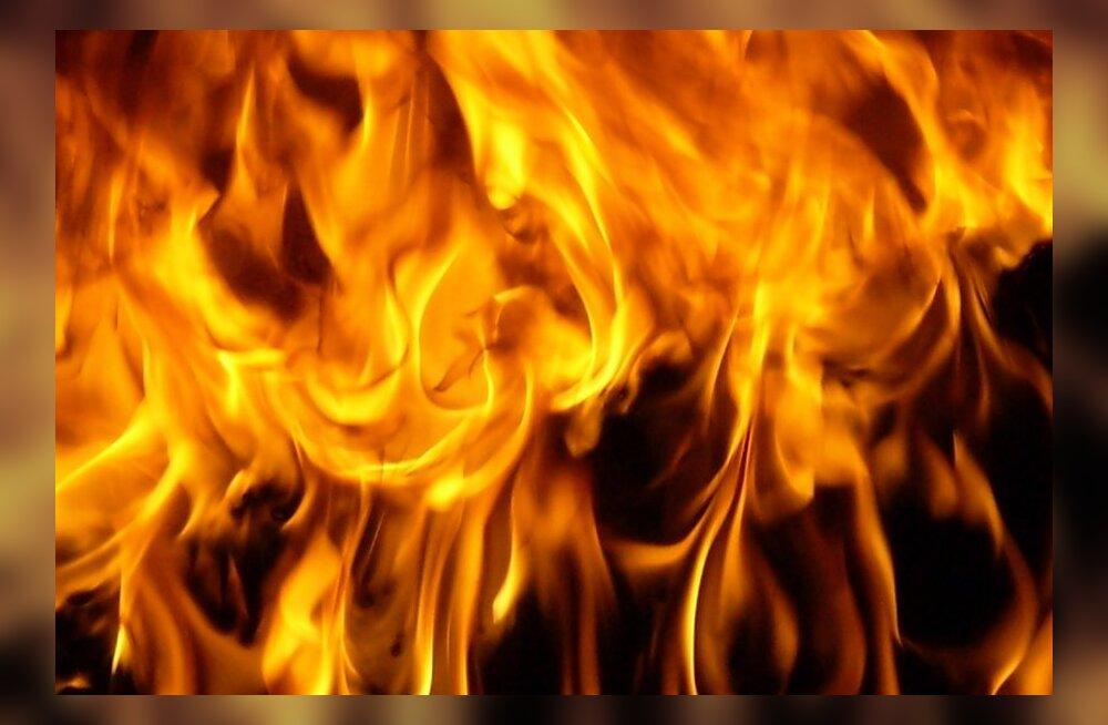 Naise põletamise eest tuli tingimisi karistus