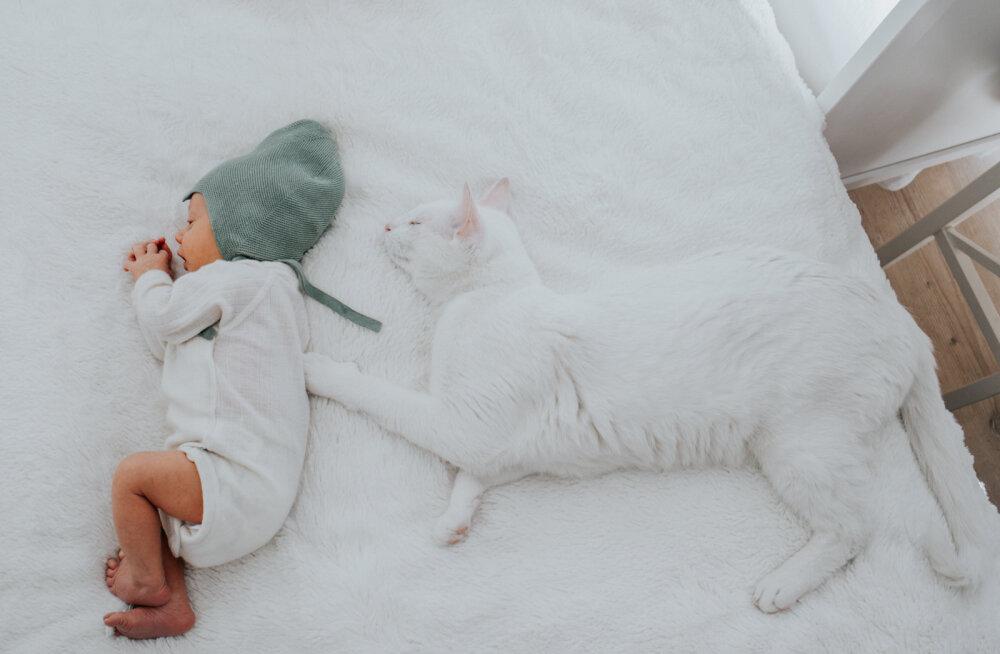 Professionaalne fotograaf annab nõu: nipid, kuidas jäädvustada läbi kaamerasilma beebiaega kodus