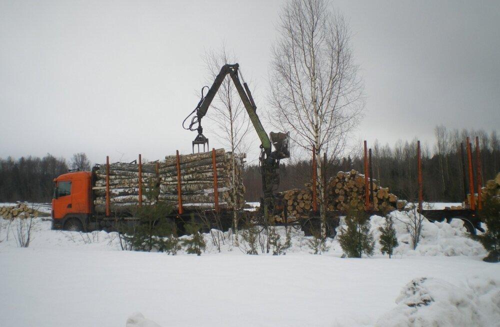 Terve sügise oli metsa väljavedu häiritud, nüüd õnneks on ilm masinad liikvele lasknud.