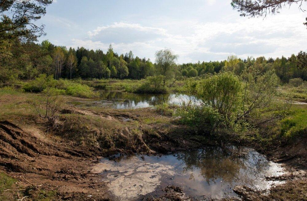 Varasem väike kaevandus, mis nüüdseks on vett täis valgunud. Täiesti võimalik, et tööd algavad seal taas, sest selliste karjääride kasutuselevõtt on Rail Balticuga seotud projektides välja toodud esmasena.