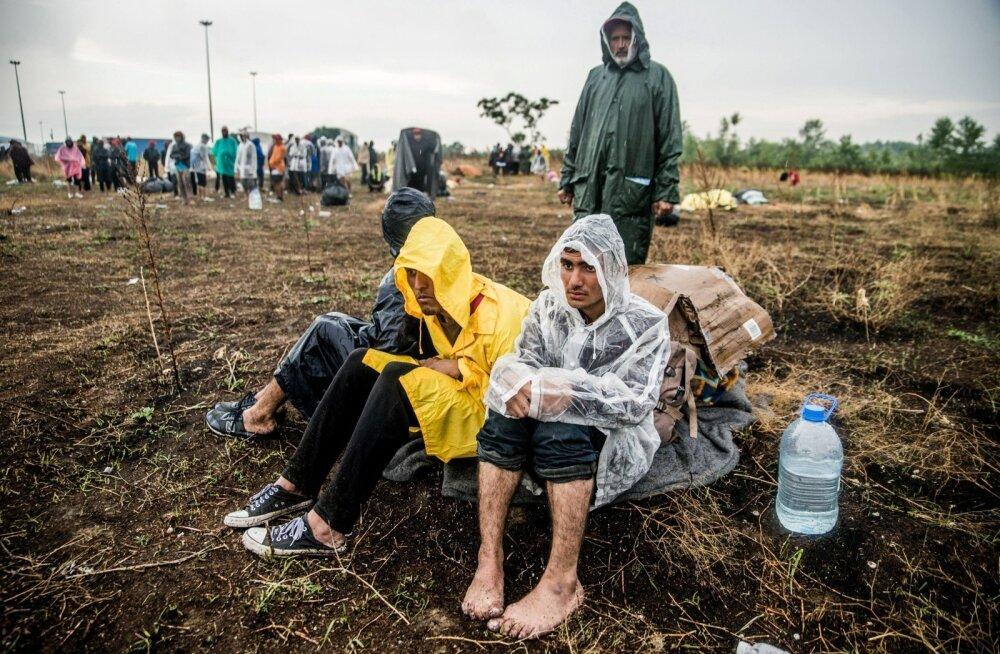 Pärast Ungari piiri sulgemist on Serbiasse ootele jäänud 5000 sisserändajat ja arvestades Ungaris valitsevaid meeleolusid, pole neil lootustki edasi pääseda.