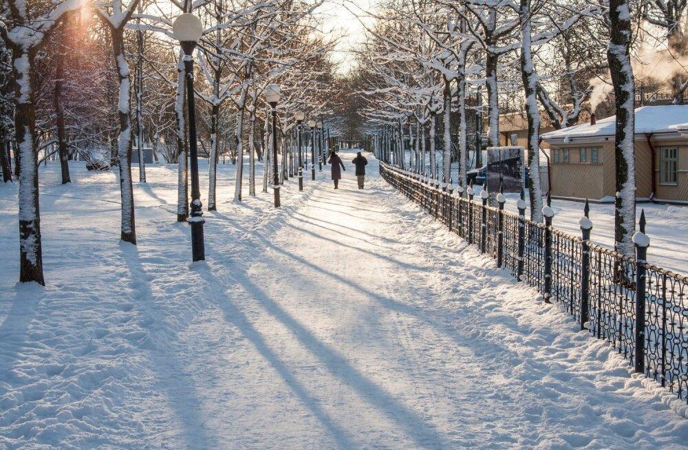 Морозный день в Кадриорге