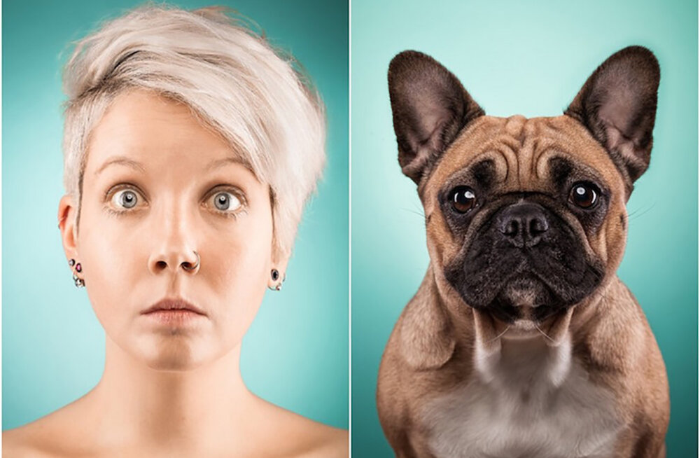 Humoorikas GALERII | Kas koerad ja nende omanikud lähevad pikapeale ühte nägu?