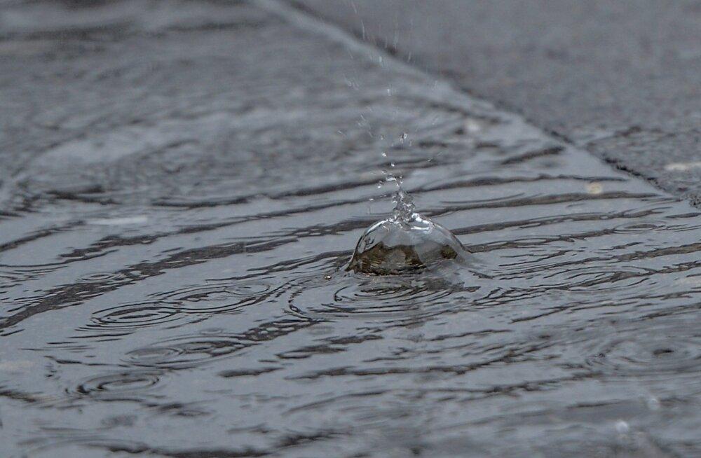Vihmane pühapäeva hommik
