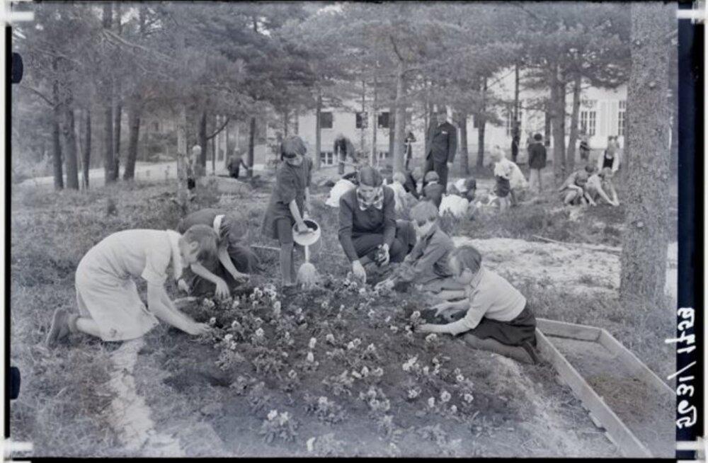 Tule ajalukku! | 1963: Kadunud lapsepõlv? Noored rakkes juba maast madalast
