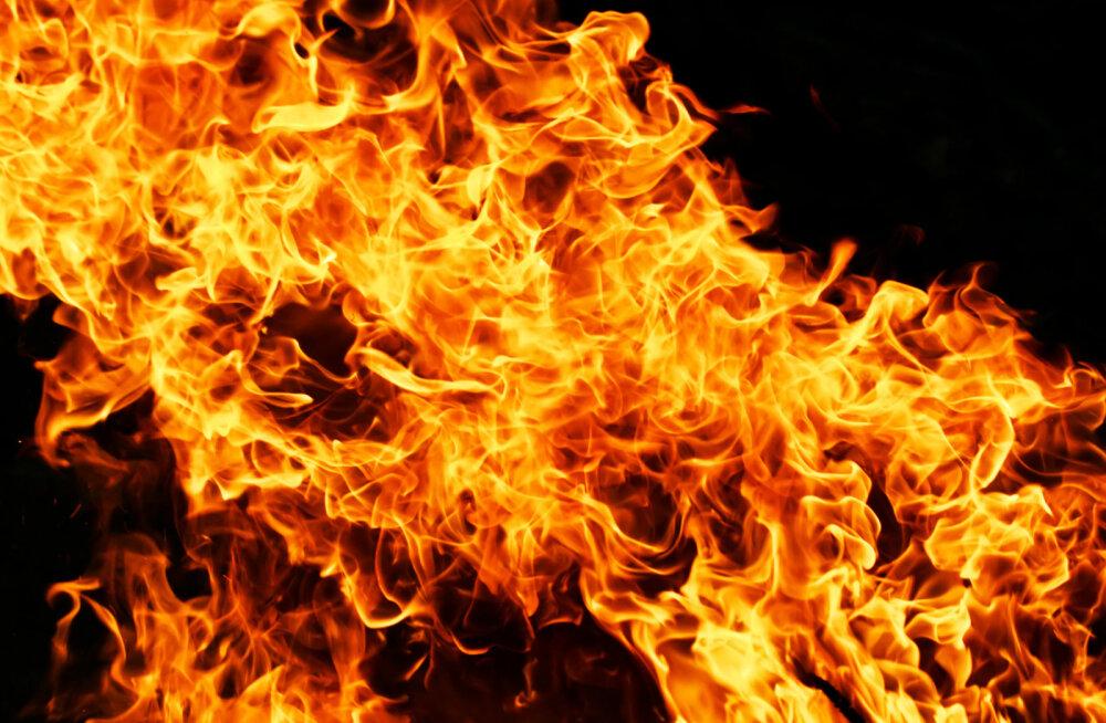 ГЛАВНОЕ ЗА ДЕНЬ: Приговор убийце нарвитянки Дарьи и очередное возгорание машин