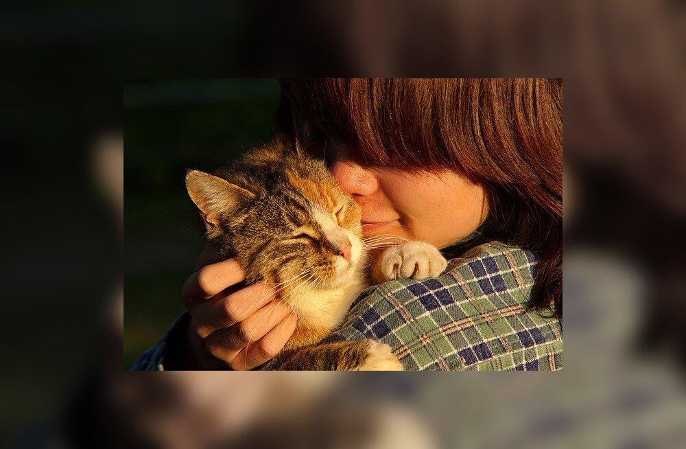 Miks pakkuda hüljatud loomale hoiukodu ja mida see annab loomasõbrale?