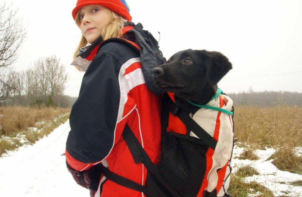 INTERVJUU   Kes oli EV100 filmis mänginud koer Lola?
