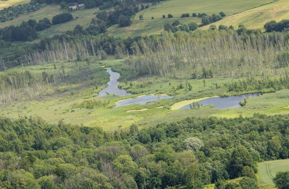 Erametsanduses pälvisid tunnustuse Eesti vanim metsaühistu, metsandusettevõtja ja maaeluministeeriumi ametnik