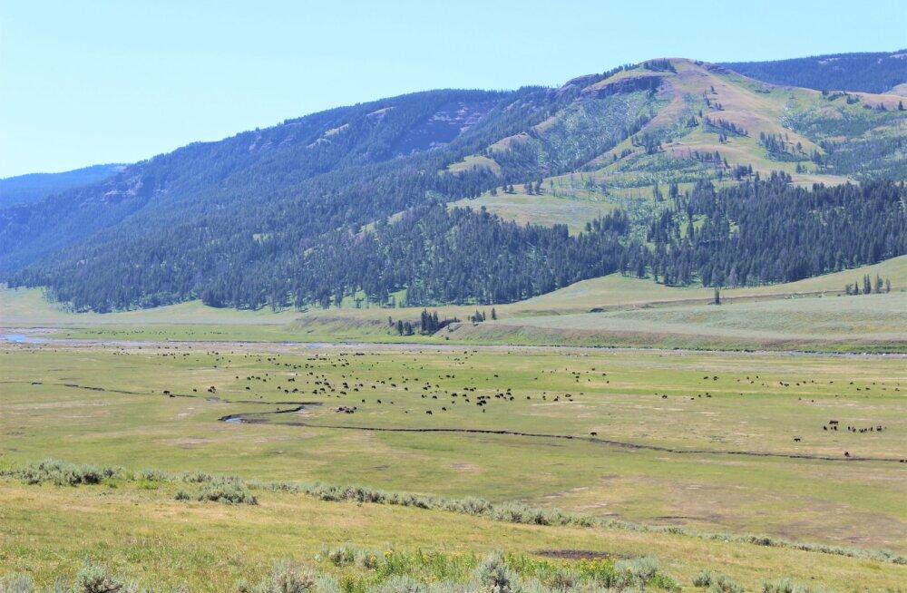 USA ühes rahvuspargis on piirkond, kus mõrtsukas võiks ilma karistuseta pääseda