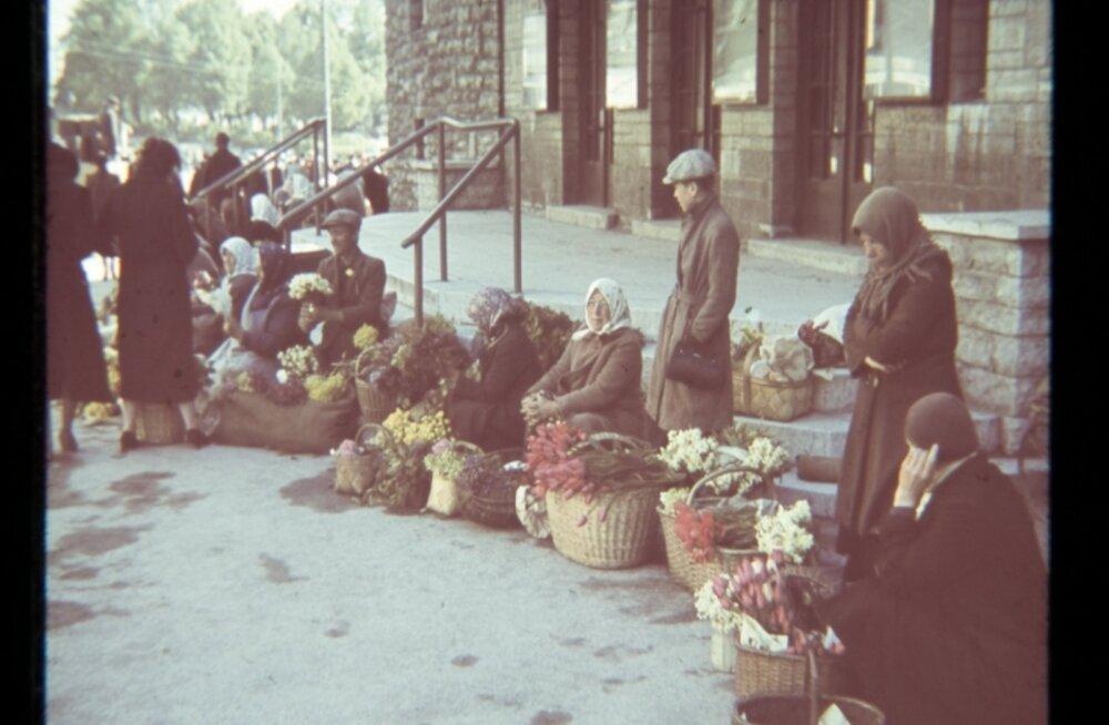Tule ajalukku! | 1950: Miks küsitakse lillede eest hingehinda?