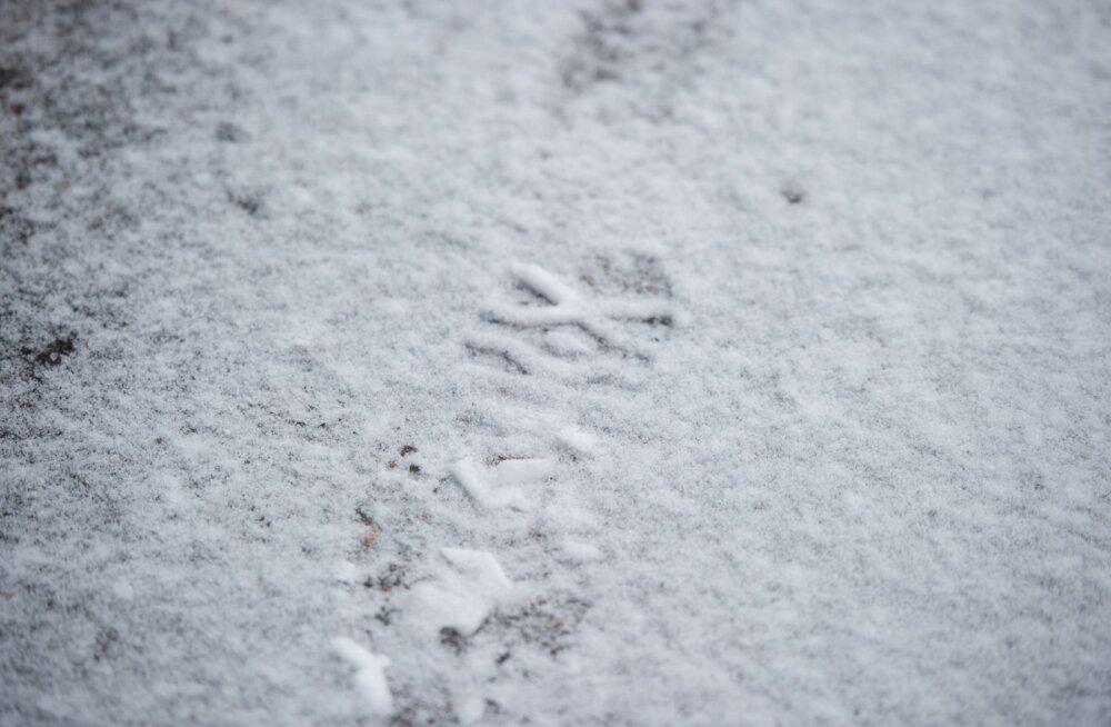 Lapimaa põhjaosas mõõdeti ametlik esimene lumi